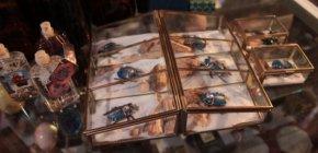 Fotos: Los escarabajos que le cambiarán la vida aRamona